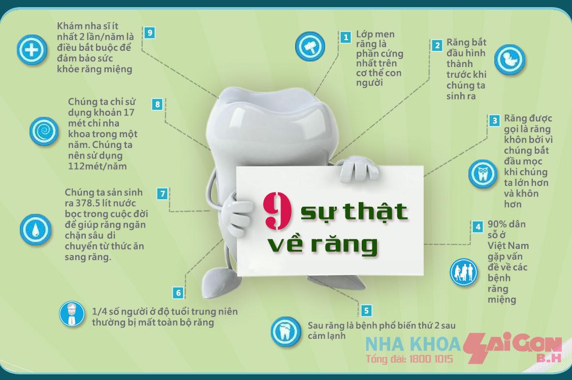 9 sự thật thú vị về răng, bạn đã biết chưa?
