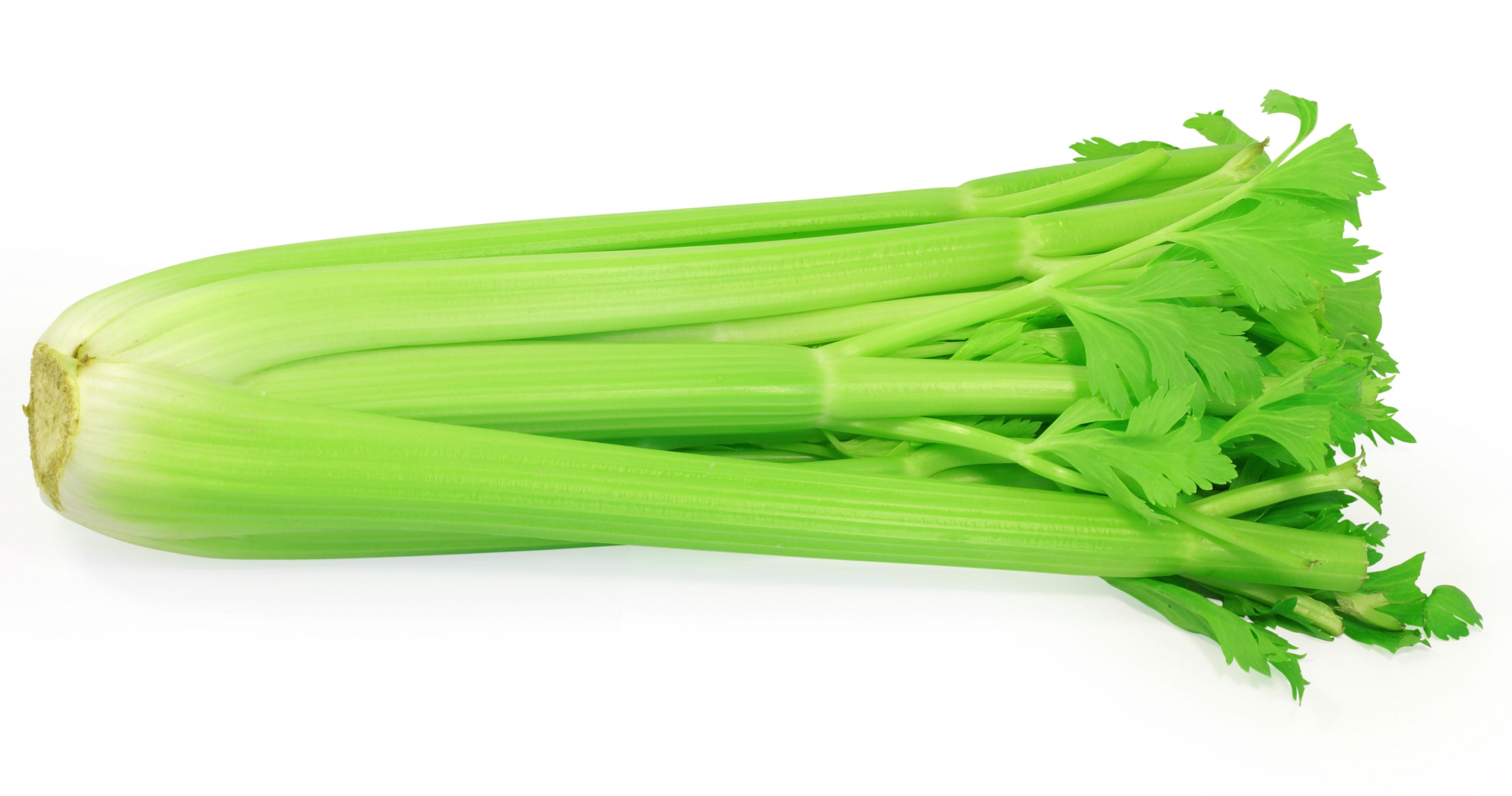 cần tây có tác dụng kích thích sự tiết nước bọt tăng lên, nhờ đó các loại vi khuẩn sẽ được làm sạch trong khi chúng ta ăn nhai