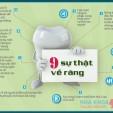 9 sự thật thú vị về răng